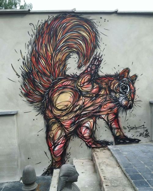 noisemx:  DZIA Krank - High Five Squirrel.