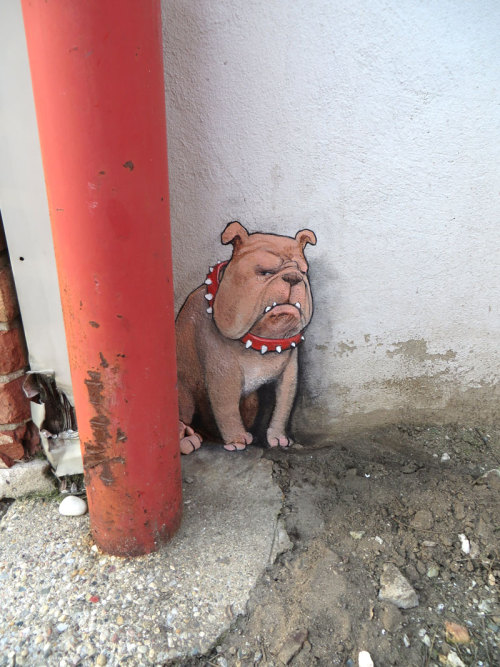sluggoonthestreet:  The red pole had never moved yet, but Jasper remains on alert all the same.