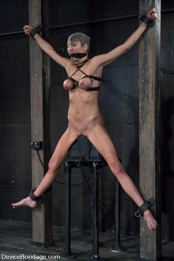 tumblr mom bondage