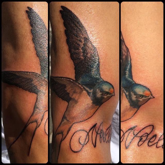 barnswallowtattoo-broadstreettattoo-tattoo