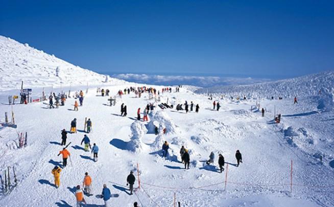 http://zaoropeway.co.jp/zao/snow/