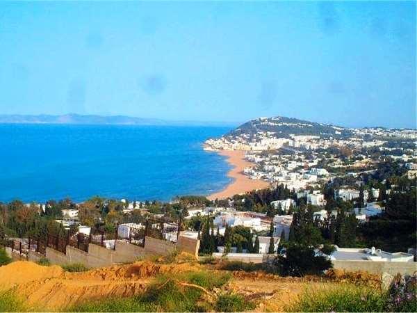 В Тунисе задержаны подозреваемые в организации теракта