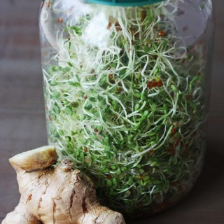 Sprout Jar and Ginger Root (detox week 2)  86lemons.com