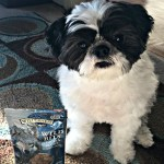 Feed your pets like family Blue Wilderness dog food and treats from PetSmart #BestofBlue