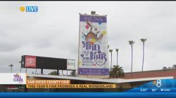 http://www.cbs8.com/story/31999362/san-diego-county-fair-mad-about-the-fair