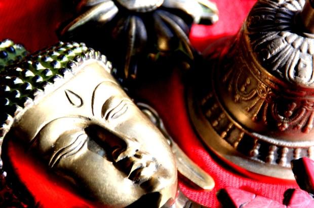 Nivedita Shastri Photograph