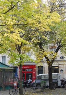 Marais courtyard 2