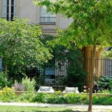 Ann Frank Garden 2
