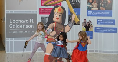 LEGO DC Comics Super Heroes Red Carpet