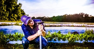 Can Arable's Pulsepod Disrupt Agriculture with Weather Prediction?