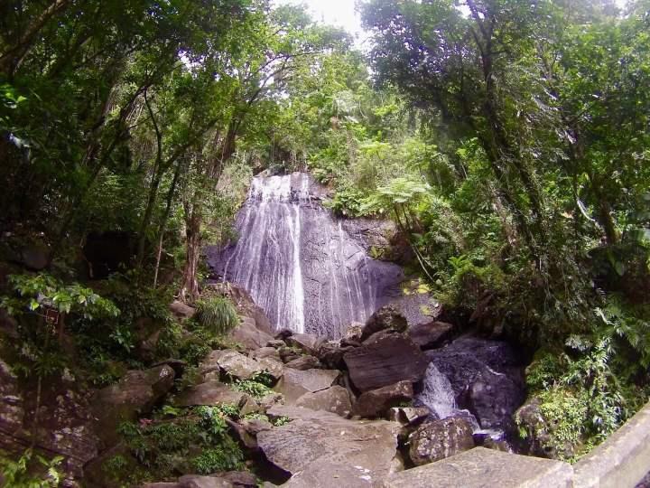Puerto Rico, Coca Falls, El Yunque, Waterfall, Waterfalls, Tropical, TropicsGourmet, Trip Planning, Trip Plan, Itinerary