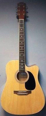 Акустична китара SELNER FG4110