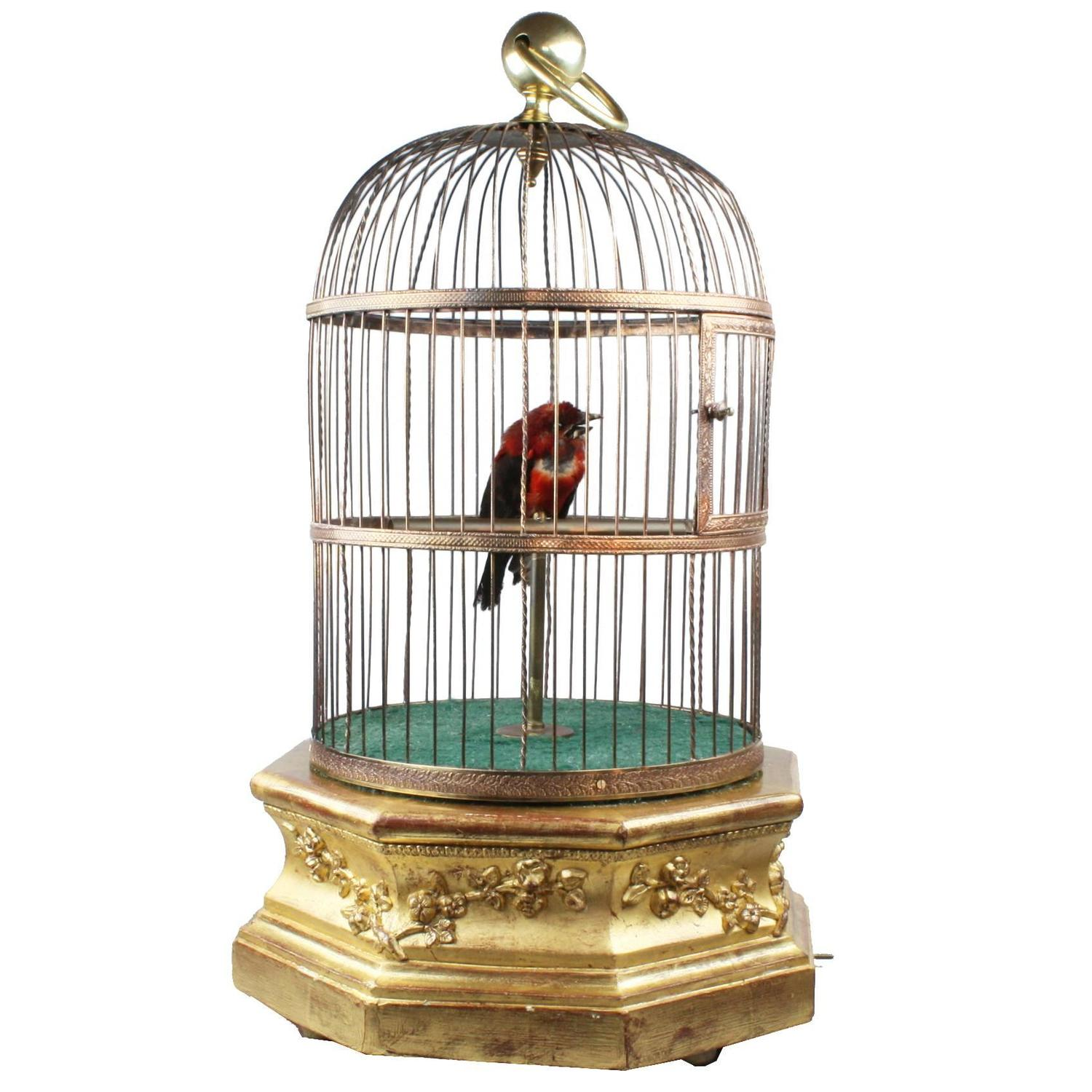 Tremendous Sale Hexagonal Base Single Singing Bird Cage By Bontems Cage By Bontems Vintage Bird Cage Hanging Stand Vintage Birdcage Light Fixture Hexagonal Base Single Singing Bird houzz-03 Vintage Bird Cage