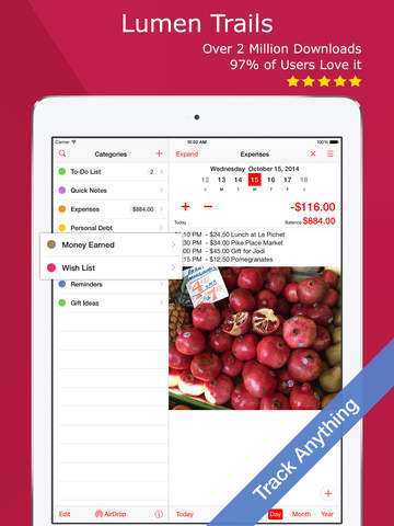 Lumen Trails Money Tracker - Budget Planner, Expense Journal and List Maker iPad