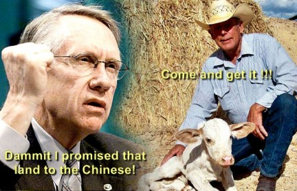 Image result for cliven bundy net worth