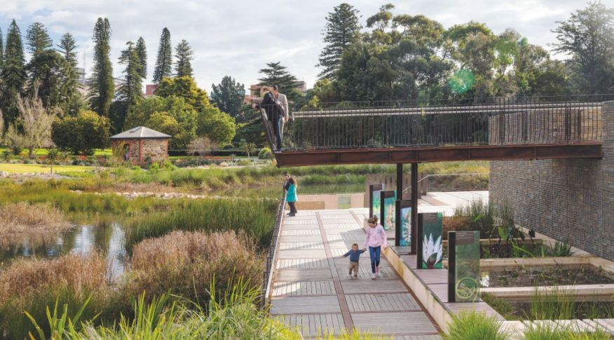 Adelaide botanical gardens wetland by taylor cullity lethlean for Adelaide innovative landscaping
