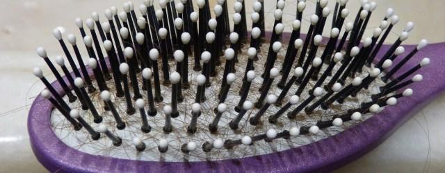 comb-1027540_1280