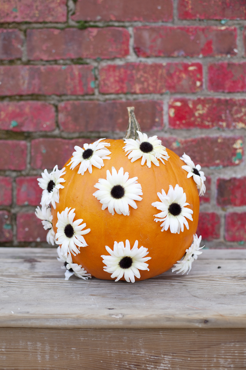 Easy No Carve Pumpkin Ideas   A Beautiful Mess easy no carve pumpkin ideas floral pumpkin decorating