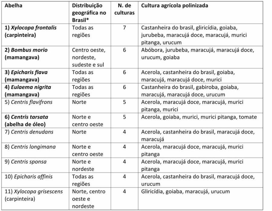 Espécies de abelhas que foram citadas como polinizadores efetivos