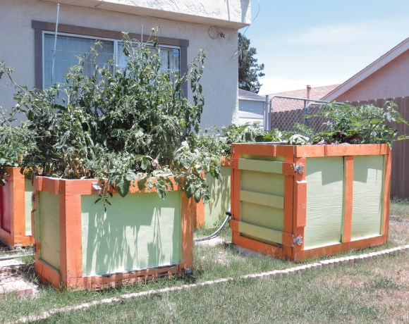 Our Colorful Raised Beds