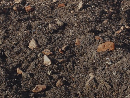 Cubiverd – Sustrato para cubiertas vegetales