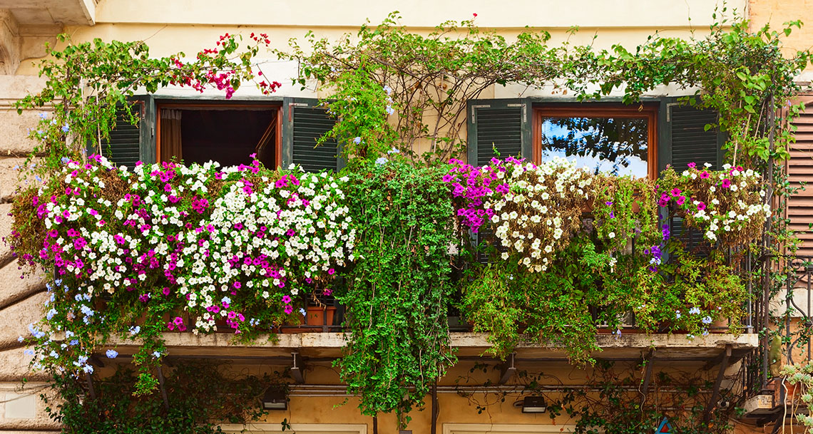Crear un jard n decorativo en macetas para interior balcones o terrazas - Decoracion de balcones con plantas ...