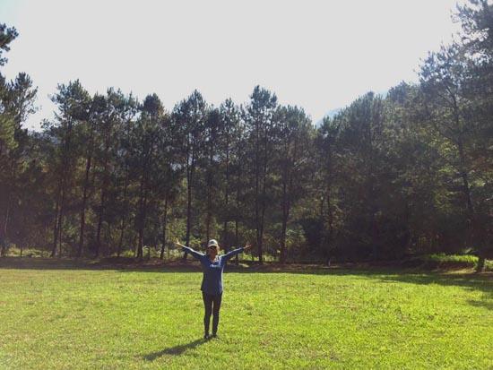 luijoe meadow