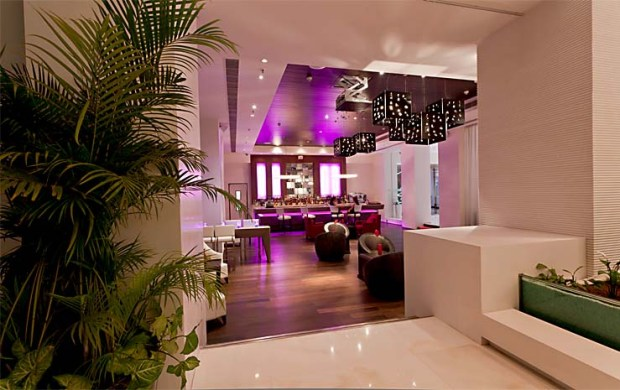 Bar Lounge - Interior Design