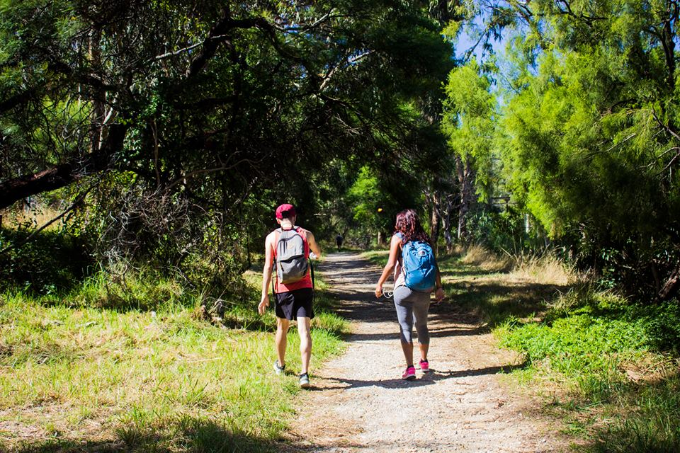 Melbourne   A day in the Dandenongs – 1000 Steps   Australia