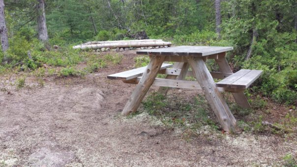 Hike-in camp site H-4 at Schoodic Woods Campground in Acadia National Park.