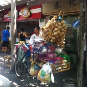 Accidental Funnies - Lady Selling Birds, Bunnies and Crickets off a Bicycle in Shanghai