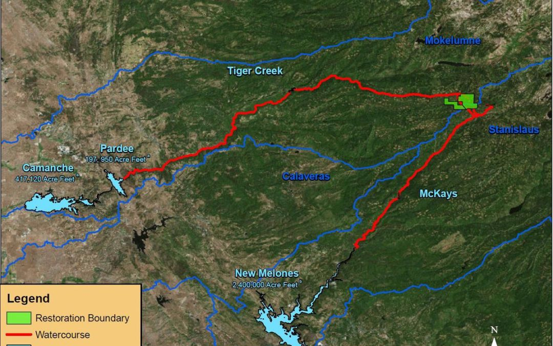 Moke River agency gets grant to better forest – Calaveras Enterprise article