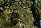 Margus (Elmo Nüganen) makes a plan with Ivo (Lembit Ulfsak) to save his Tangerine crop