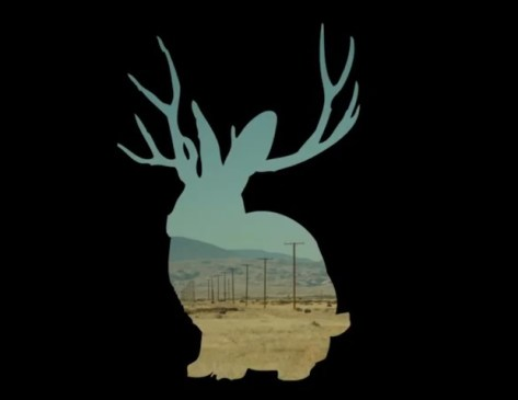 Miike Snow: Wave