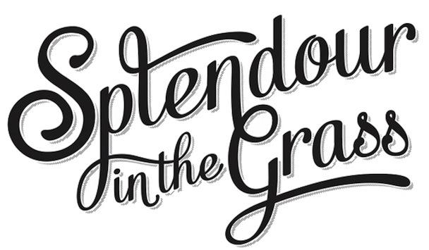 Splendour in the Grass 2013