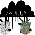 Mulga vs acid stag