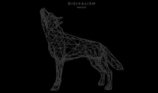 Digitalism - Wolves - acid stag