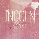 LINCOLN - Undone - acid stag
