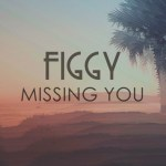 Figgy- Missing You EP - acid stag
