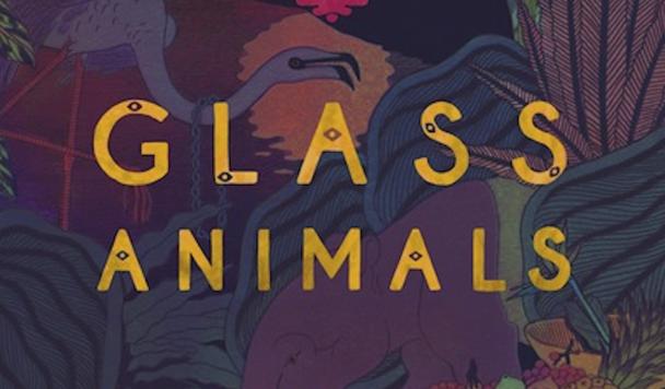 Glass Animals - Melbourne - acid stag