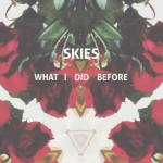 SKIES - What I Did Before  [New Single] - acid stag