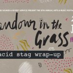 Splendour in the Grass 2015 Wrap-up - acid stag