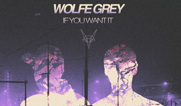 Wolfe Grey - If You Want It EP [Stream] - acid stag