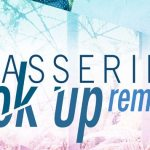 Passerine - Look Up Remixes [Premiere] - acid stag