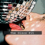 Disco Pit, French Horn Rebellion, YUNG BAE, LJ Hawk, Dim Sum, Fare Soldi - acid stag