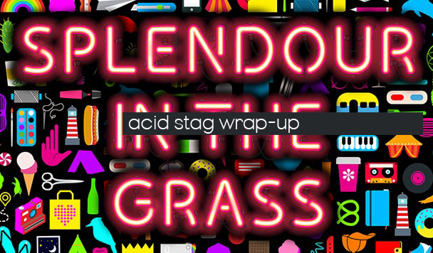 Splendour in the Grass 2016 Wrap-up - acid stag