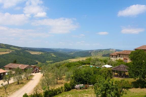 Fontodi_Tuscany_14