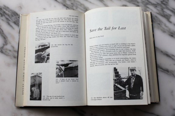 salt book 8