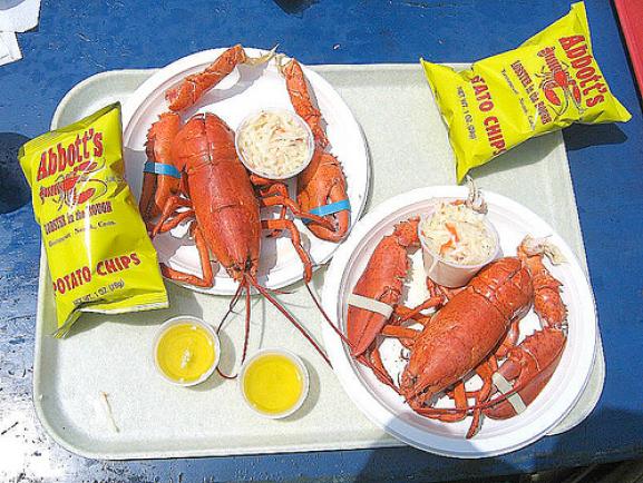 Lobster_11