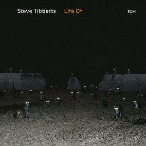 Steve-Tibbetts-life-of